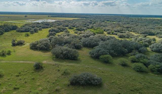 13146 County Road 360, Louise, TX 77455 (MLS #38186492) :: The Property Guys
