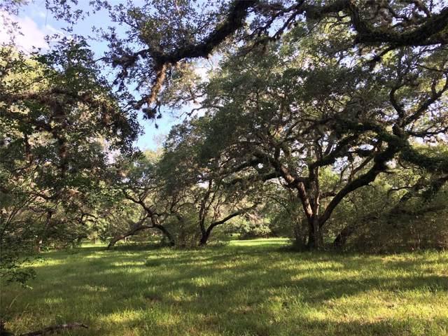 133 Center Tree Drive, Palacios, TX 77465 (MLS #38235540) :: The Sansone Group
