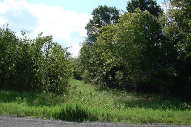Lot 59 Rolling Oaks Drive, Montgomery, TX 77356 (MLS #38259757) :: Grayson-Patton Team