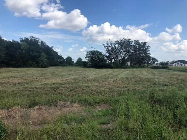 18338 Woods End Circle, Rosharon, TX 77583 (MLS #38276093) :: The Home Branch