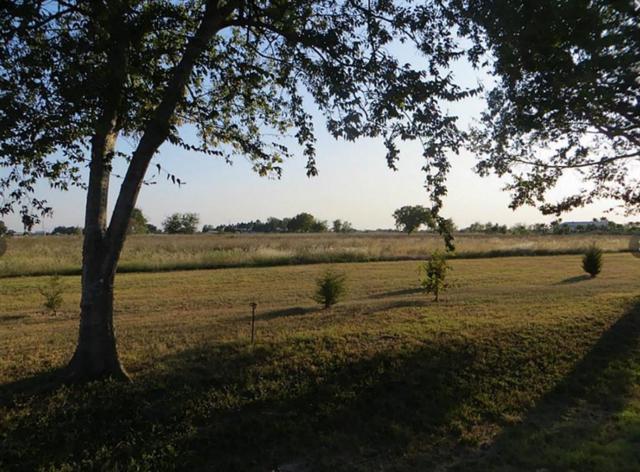 0 Moore Ranch Road, Orchard, TX 77464 (MLS #3834230) :: NewHomePrograms.com LLC