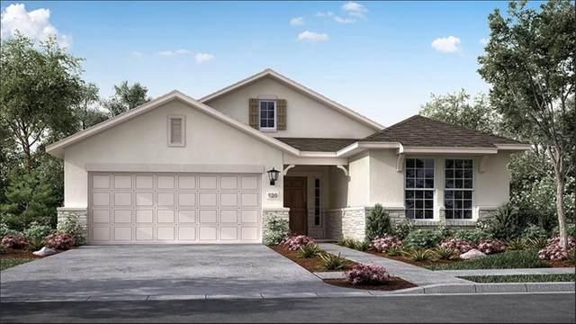 8451 Oakland Heights Lane, Richmond, TX 77407 (MLS #3834286) :: The Sansone Group