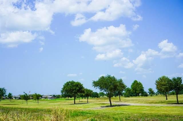 Lot 49 Back Nine Lane, Navasota, TX 77868 (MLS #38363213) :: Texas Home Shop Realty