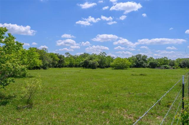 Tract 2 First Street, Rock Island, TX 77470 (MLS #38424902) :: The SOLD by George Team