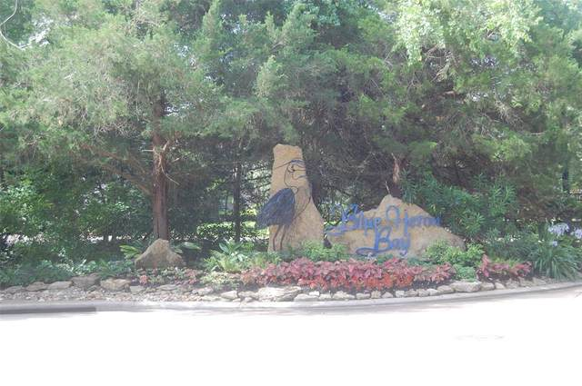 245 E Blue Heron Drive, Montgomery, TX 77316 (MLS #38426795) :: Green Residential