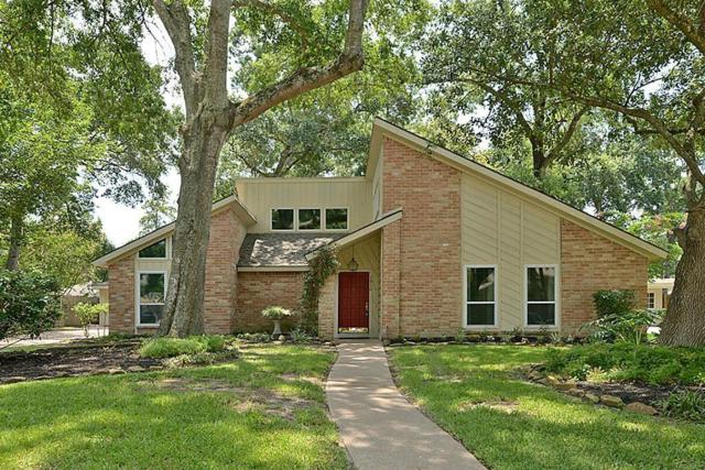 1910 Lakeville Drive, Houston, TX 77339 (MLS #38430129) :: The Heyl Group at Keller Williams