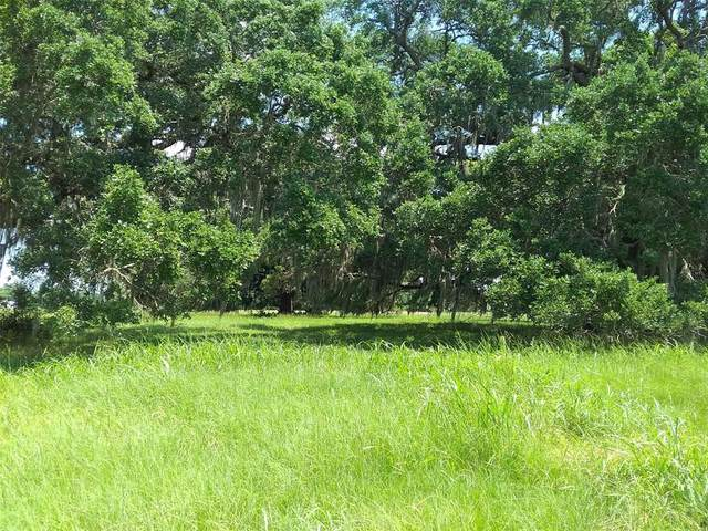 920 Mill Road, Angleton, TX 77515 (MLS #38480117) :: Lerner Realty Solutions