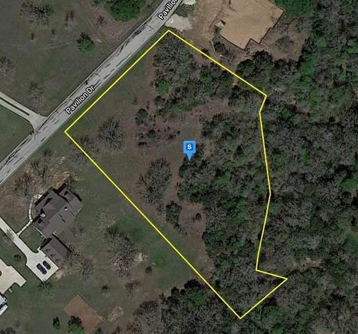 177 Pavilion Drive, Cedar Creek, TX 78612 (MLS #38559486) :: The Freund Group