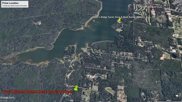 0 Lake Mount Pleasant Road, Montgomery, TX 77356 (MLS #38590720) :: The SOLD by George Team