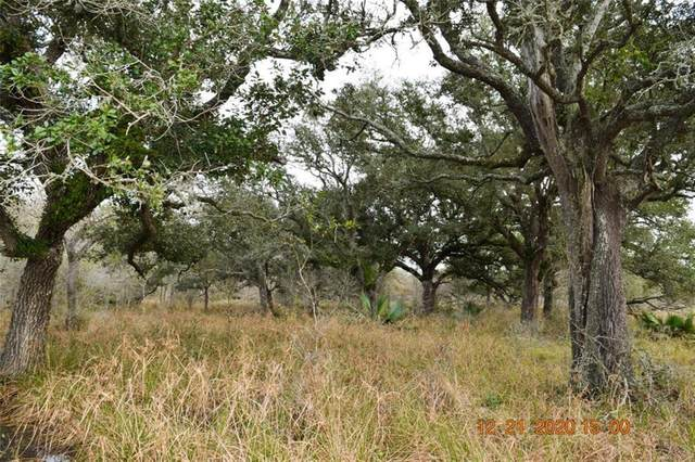 6219 Fm 3156 Road, Van Vleck, TX 77482 (MLS #38594097) :: Connell Team with Better Homes and Gardens, Gary Greene