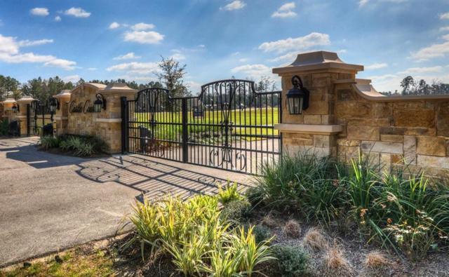 28110 E Benders Landing Boulevard, Spring, TX 77386 (MLS #38603259) :: Giorgi Real Estate Group