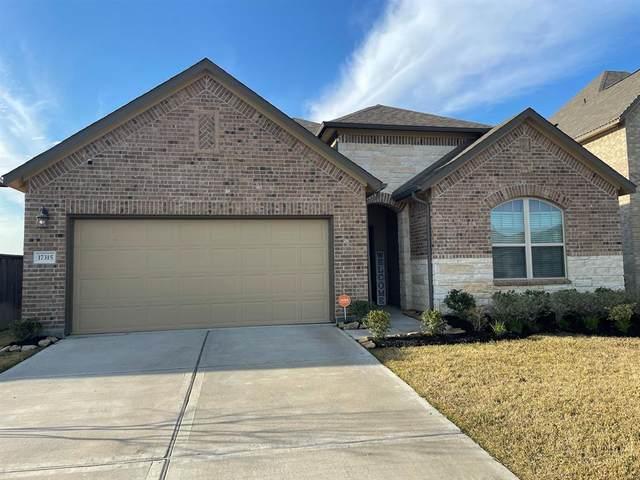 17315 Hartford Field Lane, Hockley, TX 77447 (MLS #38650367) :: Ellison Real Estate Team
