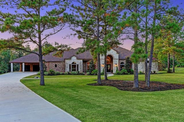 104 Fish Creek Court, Montgomery, TX 77316 (MLS #38680032) :: The SOLD by George Team