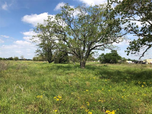 Tbd Tulley Road, Cuero, TX 77954 (MLS #38750083) :: Texas Home Shop Realty