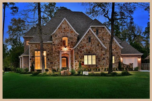 6303 N Lazy Meadow Way, Spring, TX 77386 (MLS #38773887) :: Giorgi & Associates, LLC