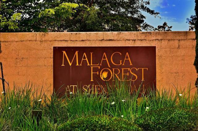 1466 Malagueta Court, Shenandoah, TX 77384 (MLS #38779390) :: Texas Home Shop Realty
