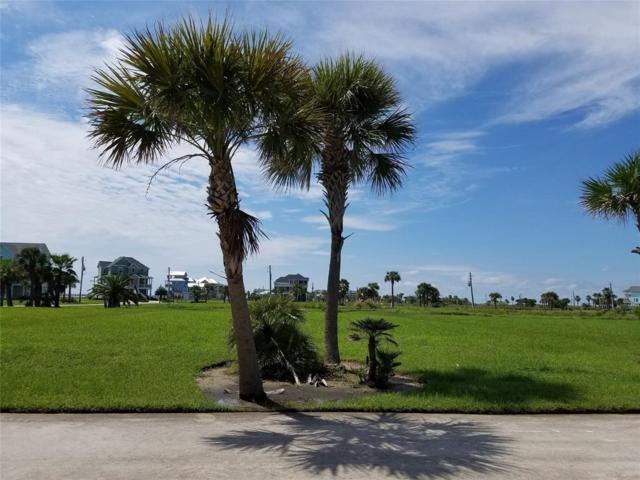 25726 Spotted Sandpiper Drive, Galveston, TX 77554 (MLS #38904856) :: Texas Home Shop Realty