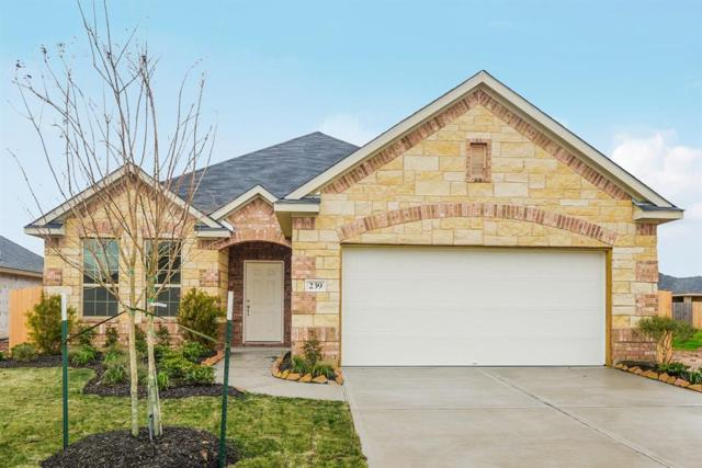 239 Sintra Lake Way, Rosenberg, TX 77469 (MLS #38905128) :: Team Sansone
