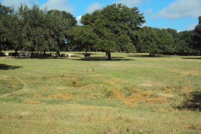 1622 Country Road 122, Hallettsville, TX 77964 (MLS #38955130) :: NewHomePrograms.com LLC