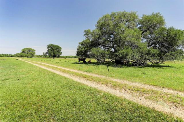 200 Rose Lane, Round Top, TX 78954 (MLS #38968247) :: The Parodi Team at Realty Associates