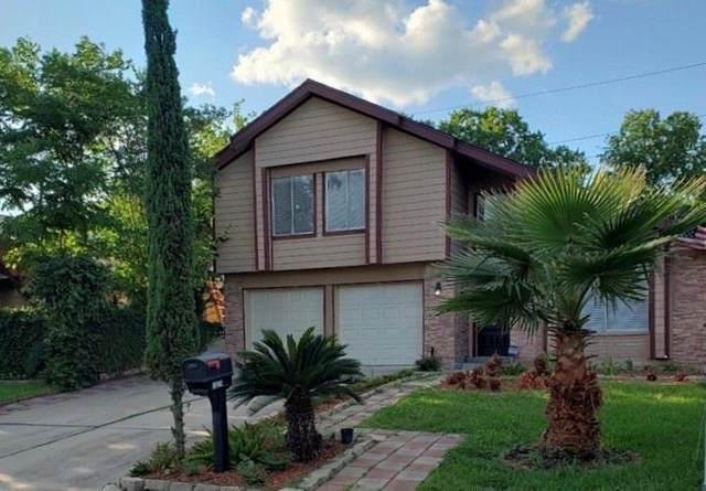 13514 Sunswept Way, Houston, TX 77082 (MLS #39068493) :: The SOLD by George Team