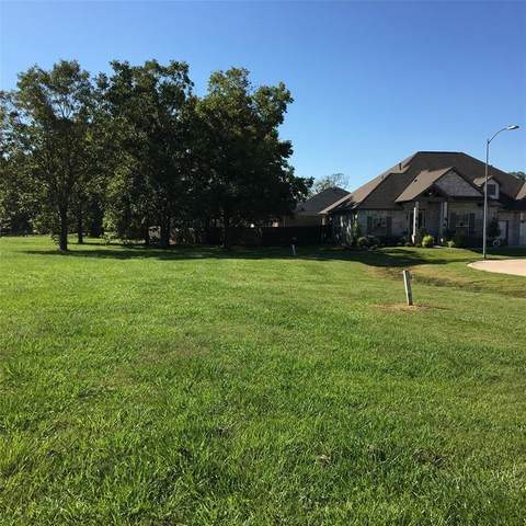 32711 Waterfowl Drive, Fulshear, TX 77441 (MLS #39136968) :: The Queen Team