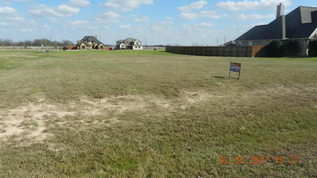 13518 Rocky Creek Estates Drive, Hockley, TX 77447 (MLS #39148178) :: Red Door Realty & Associates