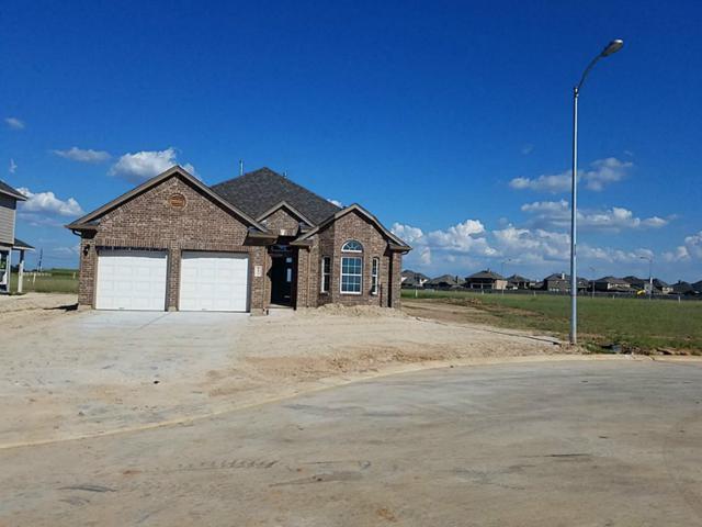 16510 Bancroft Mist Lane, Hockley, TX 77447 (MLS #39180849) :: NewHomePrograms.com LLC