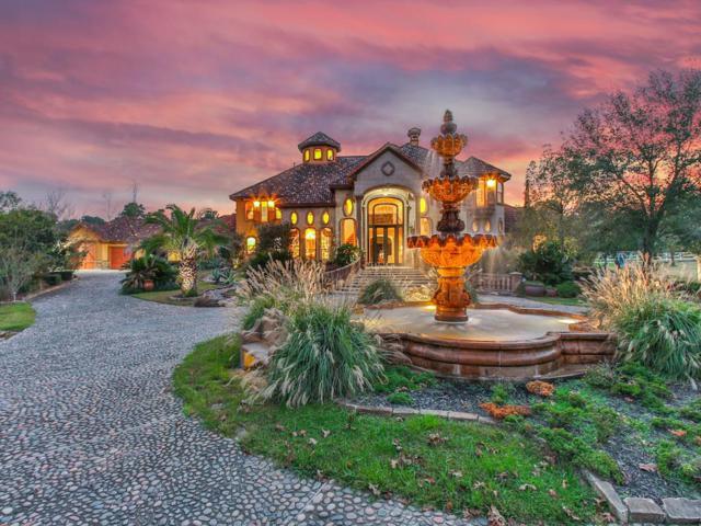 29003 Dobbin Hufsmith, Magnolia, TX 77354 (MLS #39184984) :: Krueger Real Estate