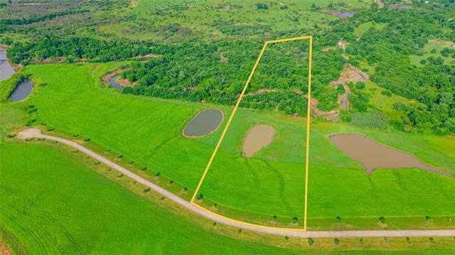 Tract 12 River Haven Drive, Navasota, TX 77868 (MLS #39200490) :: The SOLD by George Team