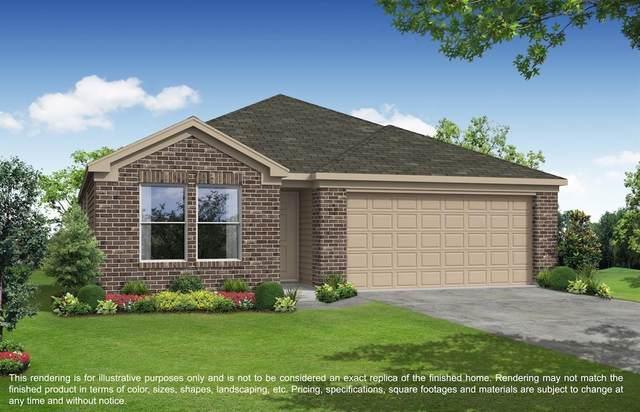 2623 Ridgeback Drive, Rosenberg, TX 77471 (MLS #39257700) :: The SOLD by George Team