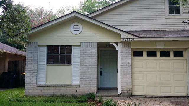 22209 Diane Drive, Spring, TX 77373 (MLS #39457402) :: See Tim Sell