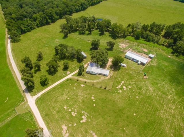 1260 Thomas Castleberry Road, Shepherd, TX 77371 (MLS #39632393) :: Texas Home Shop Realty