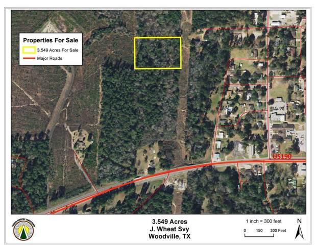 NA Redbud, Woodville, TX 75979 (MLS #39814965) :: Phyllis Foster Real Estate