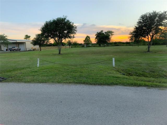 14115 Dustin Lane, Crosby, TX 77532 (MLS #39859489) :: Texas Home Shop Realty
