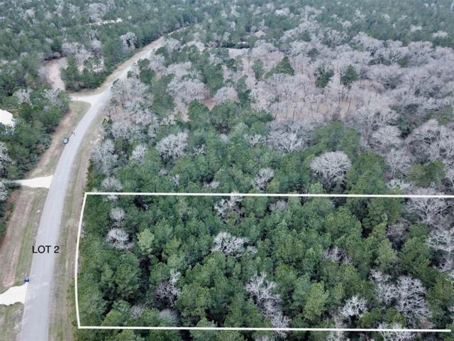 10375 Crown Ranch Boulevard Boulevard, Montgomery, TX 77316 (MLS #39869574) :: Fairwater Westmont Real Estate