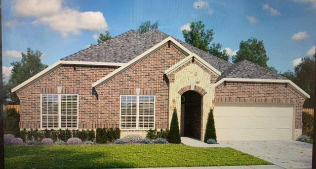 2704 Ahnya Lane, League City, TX 77573 (MLS #39891791) :: The Sansone Group