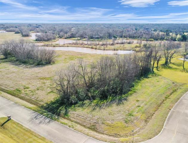9231 House Lake Drive, Missouri City, TX 77459 (MLS #39926315) :: Lisa Marie Group | RE/MAX Grand