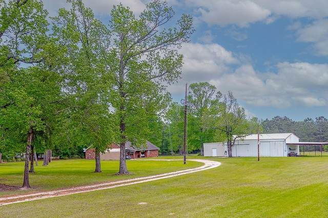 16190 Us Highway 59 N, Moscow, TX 75960 (MLS #39965499) :: Connect Realty
