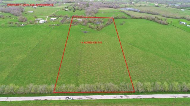 14 Acres County Road 316A, Navasota, TX 77868 (MLS #39990493) :: Fairwater Westmont Real Estate