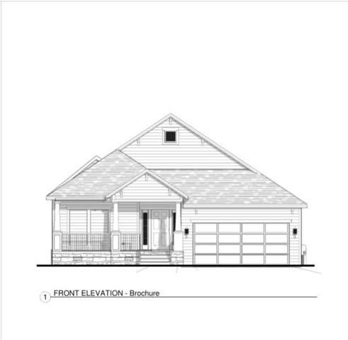 8014 Comal Street, Houston, TX 77051 (MLS #40068010) :: Texas Home Shop Realty