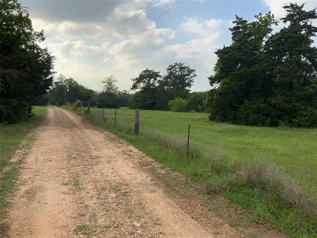 00 Old Laake Lane Lane, New Ulm, TX 78950 (MLS #40082867) :: Connect Realty