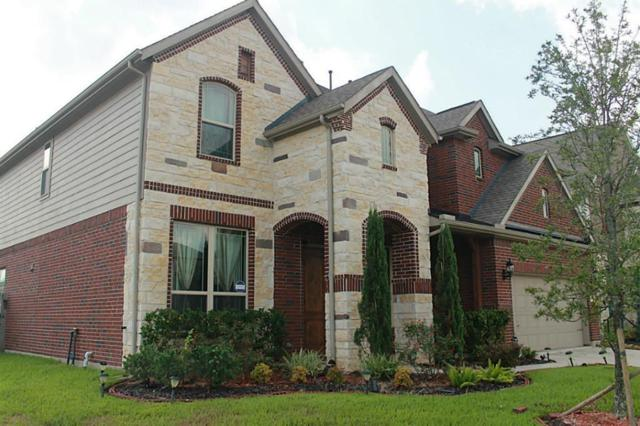 26803 Grey Peregrine Drive, Katy, TX 77494 (MLS #40107545) :: Giorgi Real Estate Group