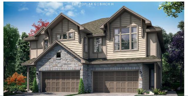 1719 Ryon Falls Drive, Richmond, TX 77469 (MLS #40165461) :: Caskey Realty