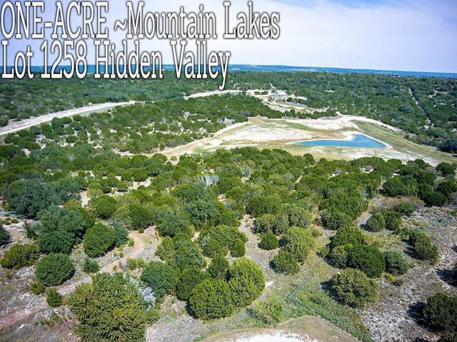 Lt 1258 Hidden Valley, Bluff Dale, TX 76433 (MLS #40202847) :: CORE Realty