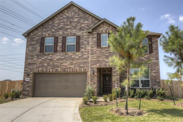 9710 Rocket Cress Court, Spring, TX 77379 (MLS #40215670) :: The Heyl Group at Keller Williams