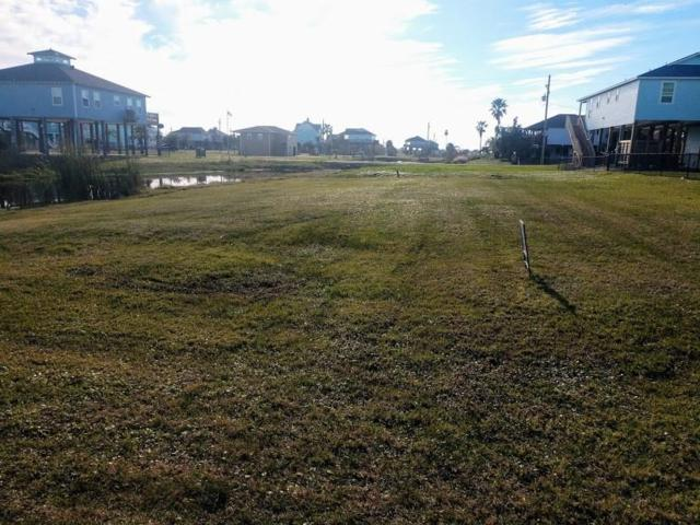 Lot 144 & 145 Palmetto Drive, Crystal Beach, TX 77650 (MLS #40224444) :: The SOLD by George Team
