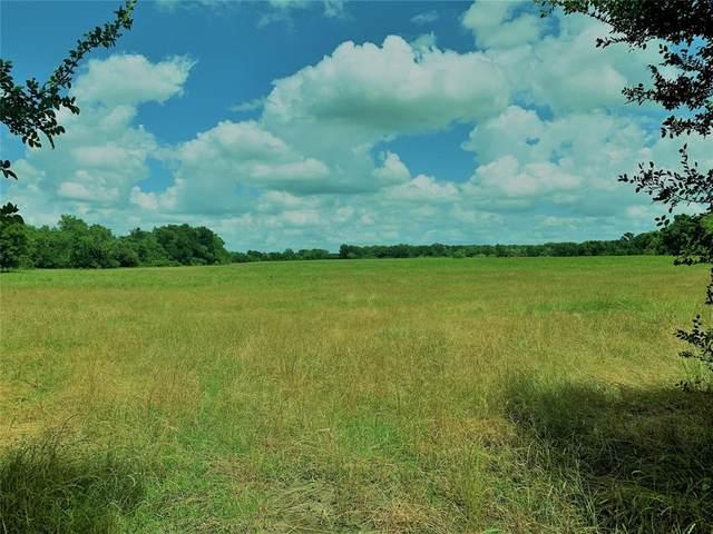 TBD County Rd 402, Flatonia, TX 78941 (MLS #4022614) :: Caskey Realty