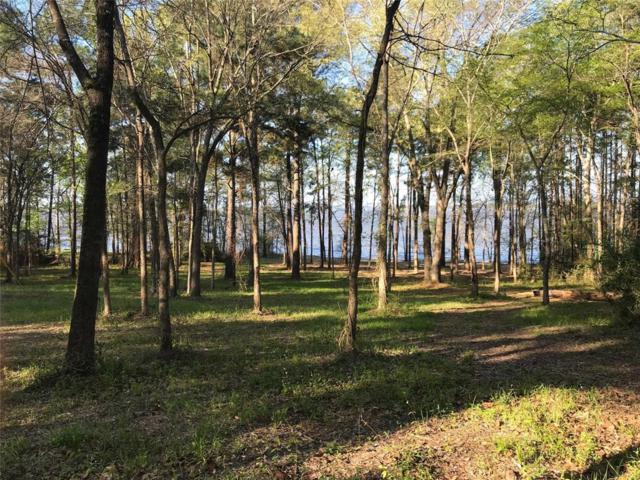 00 Cr 3464, Broaddus, TX 75929 (MLS #40258811) :: The SOLD by George Team