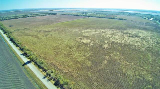 0000 County Road 54, Rosharon, TX 77583 (MLS #40291020) :: Connell Team with Better Homes and Gardens, Gary Greene